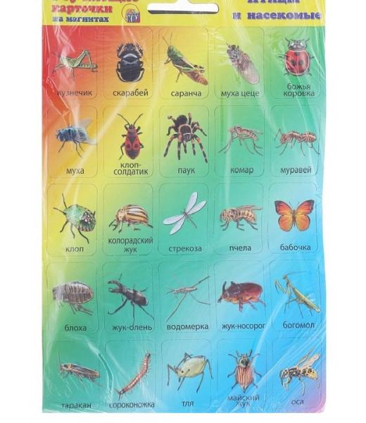 """Обучающие карточки на магнитах """"Птицы и насекомые"""" (50 карточек)"""